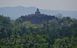 Java: Borobudur viewed from the Plataran hotel