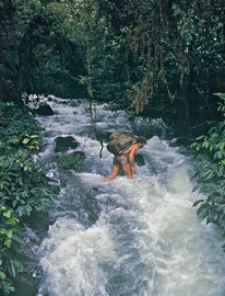 PNG: Max Smart crossing the Wok (river) Fuktup, a tributary of the Fly River
