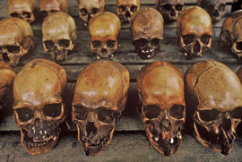 W. Papua, Asmat: patinated skulls from Simsagar village, which are used as pillows. Those in the foreground are relatives and ancestors. The ones behind, missing their lower jaws, are headhunting trophies