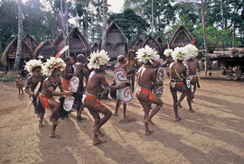 PNG, Trobriand Islands: male dancers celebrating 'Milamala' (harvest festival)