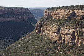 Mesa Verde, Colorado: view of Soda Canyon