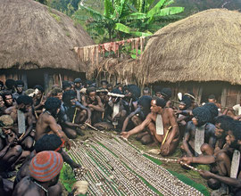 W. Papua, Baliem Valley: shell valuables are distributed to important male mourners