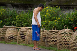 Bali: a man watering his caged fighting-cocks, near Gunung Kawi Temple
