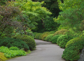 Portland, Oregon: the Japanese garden on Nob Hill