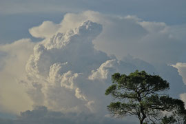 Tanzania, Klein's Camp: gathering storm clouds in the late afternoon