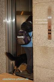 Ab in den Fahrstuhl