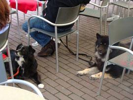 Cafe-Besuch inmitten der Fußgängerzone