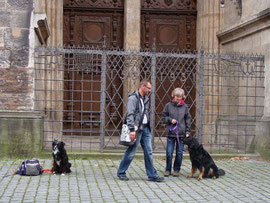 Sitz vorm Ulmer Münster mit Ablenkungen