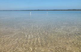 Shark Bay, Westaustralien