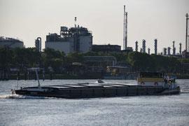 Industrie an der Neckarmündung I