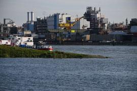 Industrie an der Neckarmündung II