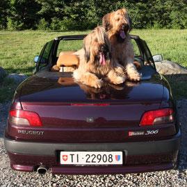 Ausflug mit dem Cabrio