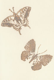 Schmetterlinge creme C6