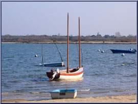 """Arcachon, """"Ville d'Automne"""", son petit port de l'Aiguillon et bateaux"""
