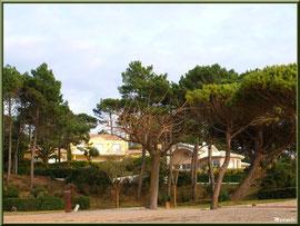 Belles villas en façade du front de mer de la plage Péreire à Arcachon, Bassin d'Arcachon (33)