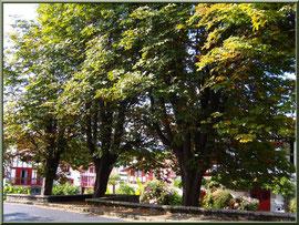 Aïnoha : la rue principale et ombrage (Pays Basque français)