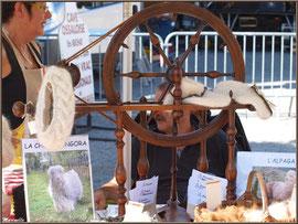 Etal laine, Fête au Fromage, Hera deu Hromatge, à Laruns en Vallée d'Ossau (64)