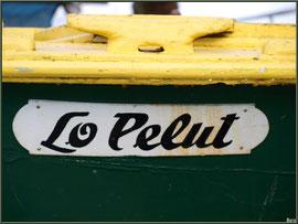 """Détail de la pinasse """"Lo Pelut"""", en cale sèche, Pinasse au mouillage au port ostréicole de La Teste de Buch (Bassin d'Arcachon)"""