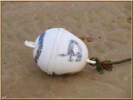 Corps-mort sur le sable