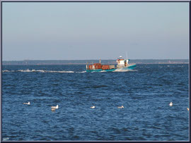 """Bateau chaland et mouettes sur le Bassin, vue depuis le front de mer de la """"Ville d'Eté"""" à Arcachon"""