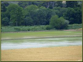 Aqueduc à Fontvielle dans les Alpilles (Bouches du Rhône) : paysage et rizières en son extrémité (vue zoomée)