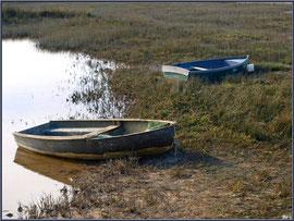Canot en bordure des près salés et du sentier du littoral depuis le port d'Arès (Bassin d'Arcachon)