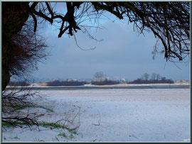 Plage et tamaris en habit neigeux, Arcachon à l'horizon (février 2012)