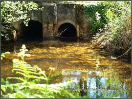 Une des écluses et reflets d'or sur le Canal des Landes au Parc de la Chêneraie à Gujan-Mestras (Bassin d'Arcachon)