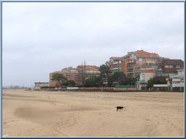 """Arcachon, """"Ville d'Eté"""", la plage du côté de la jetée d'Eyrac (photo prise en février)"""