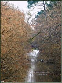 Le Canal des Landes avec en fond une de ses écluses, au Parc de la Chêneraie à Gujan-Mestras (Bassin d'Arcachon)