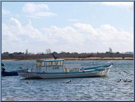 """Arcachon, """"Ville d'Automne"""" et son petit port de l'Aiguillon, bernaches devant un bateau chaland sur le Bassin avec en face plage port du Rocher de La Teste"""