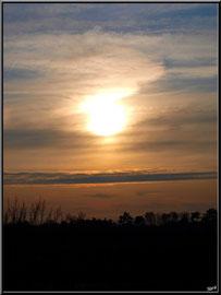 Coucher du soleil depuis le port