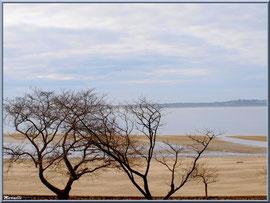 Promenade de front de mer de la plage Péreire à Arcachon, Bassin d'Arcachon (33)