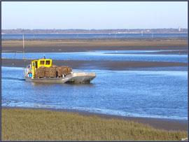 Bateau chaland chargé de poches d'huîtres rentrant au port