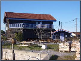 """Dégustation d'huîtres """"La Cabane 301"""" sur le port au lieu-dit Le Pointon"""