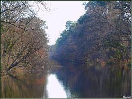 Le Canal des Landes et ses reflets au Parc de la Chêneraie à Gujan-Mestras (Bassin d'Arcachon)