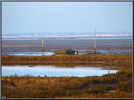 Tonne et son lac en bordure du Bassin à marée basse