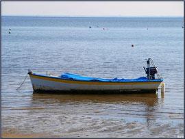 Canot au mouillage au large de la plage de Claouey (Bassin d'Arcachon)