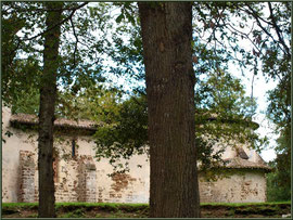 Eglise St Michel du Vieux Lugo à Lugos (Gironde) : façade Sud et le choeur à droite derrière les chênes