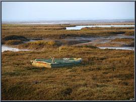 Canot dans les prés salés à marée basse