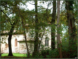 Eglise St Michel du Vieux Lugo à Lugos (Gironde) : façade Sud et le choeur derrière les chênes
