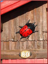 Cabane 80 et sa coccinelle géante