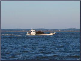 """Bateau chaland sur le Bassin et  l'Ile aux Oiseaux en fond, vue depuis le front de mer de la """"Ville d'Eté"""" à Arcachon"""