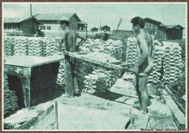 Préparation des barils de chaux pour le chaulage des tuiles