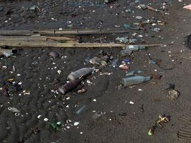 割れたガラス瓶は非常に危険。 ゴミの多い場所とほとんど無い場所があった
