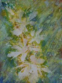 Blüten | 160 x 120 cm