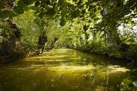 La Venise verte - 70 kms