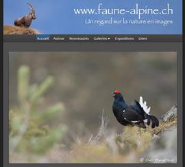 Éric Mariéthoz - Faune Alpine