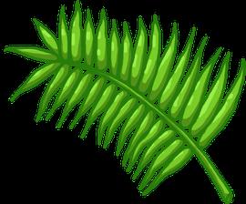 """Illustrieren des Palmwedels für das Commercial-Intro von """"FreudBot"""" © Slash Games"""