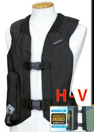 H-V Model